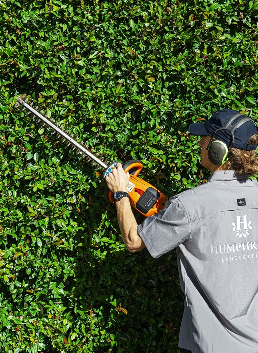 Maitainence Humphreys Landscaping Services